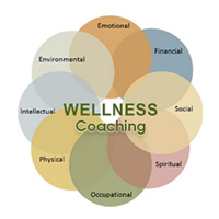 Consultation, Assessment and Coaching